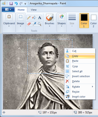 Copying a section of an Image in Microsoft Paint Brush